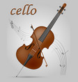 cello musical instruments stock vector image