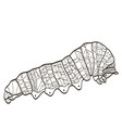 coloring insect caterpillar for adults vector image