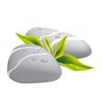 grey pebbles vector image vector image
