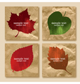 collection of leaves on a paper vector image vector image