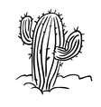 black and white cactus vector image