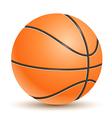 Realistic Basketball vector image