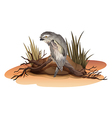 A bird above the branch of a tree near the rock vector image