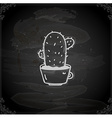 Hand Drawn Cactus vector image