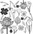 flower sketch doodle vector image