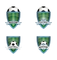 Set football logo for the team and the cup vector image
