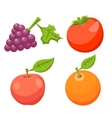 Icon Set Tomato Apple Orange Grape vector image