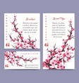 sakura blossoms cards templates vector image