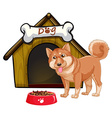 Dog and house vector image vector image