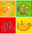 fruit color background vector image