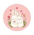 Rabbits in Love vector image