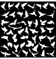 Concept of love or peace Set silhouettes doves vector image