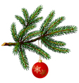 pine tree branch with christmas ball vector image vector image