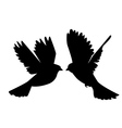 a pair of doves vector image