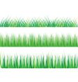 collection of green grass isolated on white vector image