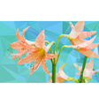 Low poly geometric of Amaryllis flower vector image