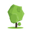 stylized low poly polygon green tree vector image