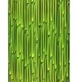Bamboo seamless pattern vector image