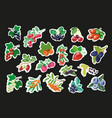 set of fruit berry stickers pins or fashion vector image