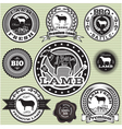 set of labels with Sheep and lamb vector image