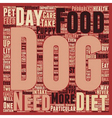 How To Choose The Right Dog Food text background vector image