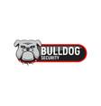 logo bulldog security vector image