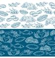 Marine life seamless borders vector image
