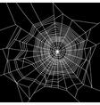 Cobweb White on Black Background vector image