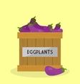 Fresh Eggplants vector image