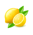 Lemon and slice isolated on white vector image