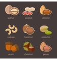 Nuts icon flat set vector image