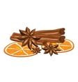 Cinnamon anise and orange on a white background vector image