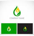 eco green leaf water drop bio logo vector image
