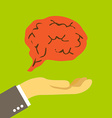 Brain on the palm vector image