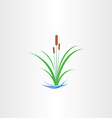 green reed bulrushes design vector image