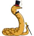 rich snake vector image