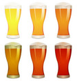 lager amber and stout beers set vector image