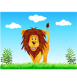 lion in the wild vector image vector image
