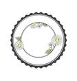 Daisy Flower Round Frame vector image