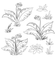 Flowers and grass set contours vector image
