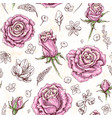 roses sketch pattern vector image