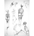 Sketch of skeletons vector image