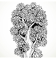 Graphically drawing black ink big old tree vector image