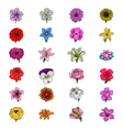 Floral Hand Drawn Colored Icons 1 vector image