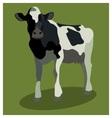 Animal cow on green vector image