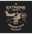 Motocross sport Free style vector image