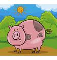 pig livestock animal cartoon vector image vector image