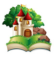 Castle and book vector image