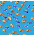 Powder Blue Tang fish vector image