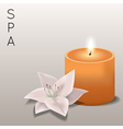 spa with flower and candle vector image